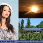Solar Energy Fizzled